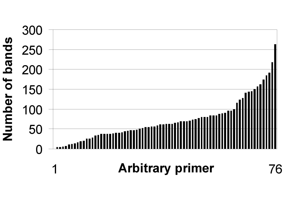https://static-content.springer.com/image/art%3A10.1186%2F1471-2164-6-51/MediaObjects/12864_2004_Article_252_Fig2_HTML.jpg