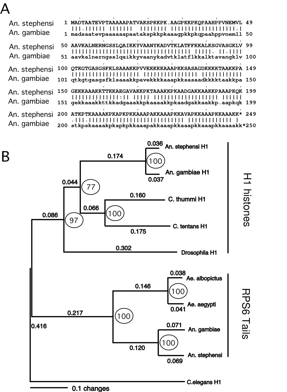 https://static-content.springer.com/image/art%3A10.1186%2F1471-2164-6-8/MediaObjects/12864_2004_Article_209_Fig4_HTML.jpg