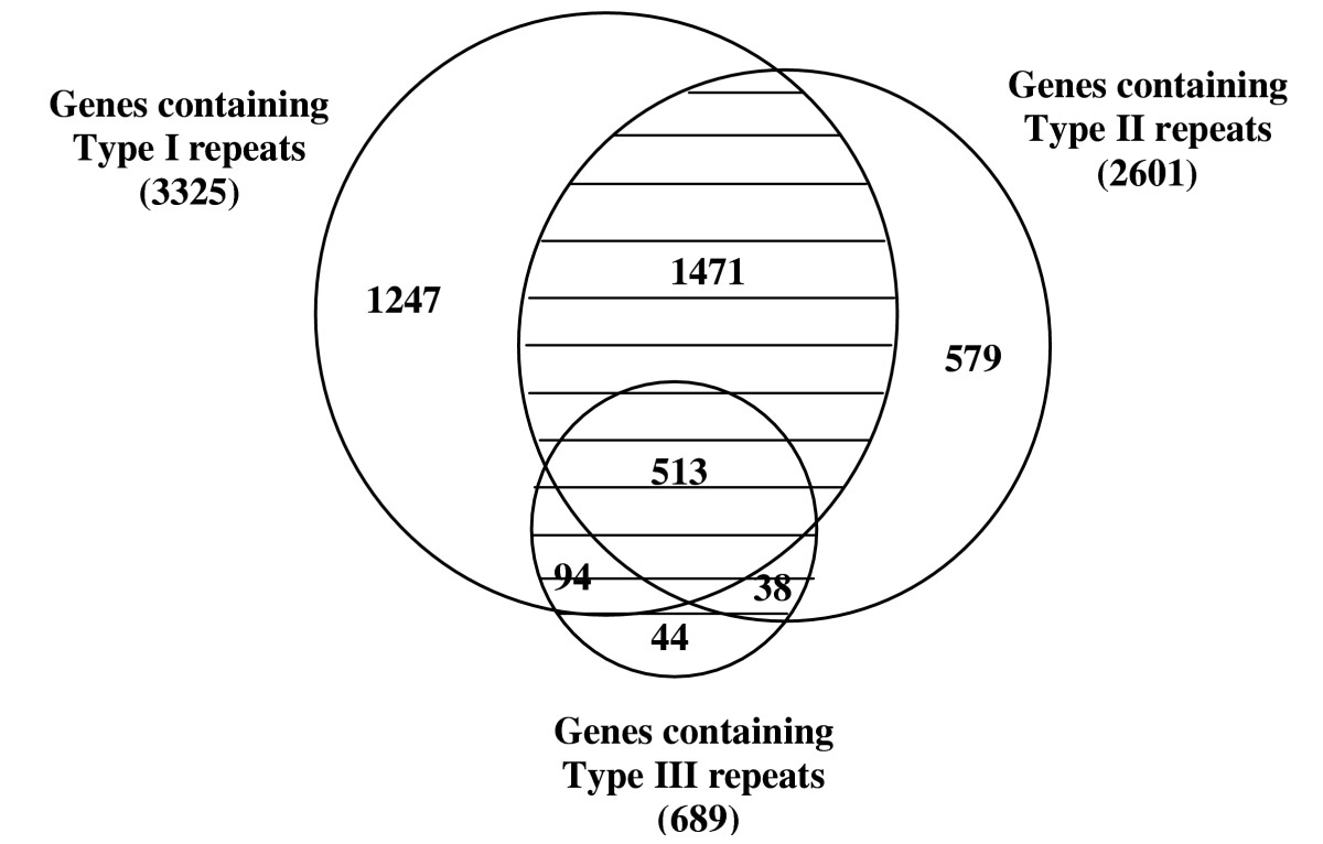 https://static-content.springer.com/image/art%3A10.1186%2F1471-2164-6-83/MediaObjects/12864_2004_Article_284_Fig4_HTML.jpg