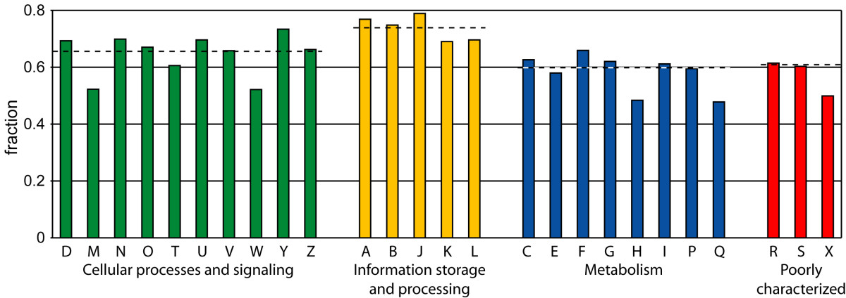 https://static-content.springer.com/image/art%3A10.1186%2F1471-2164-7-10/MediaObjects/12864_2005_Article_393_Fig3_HTML.jpg