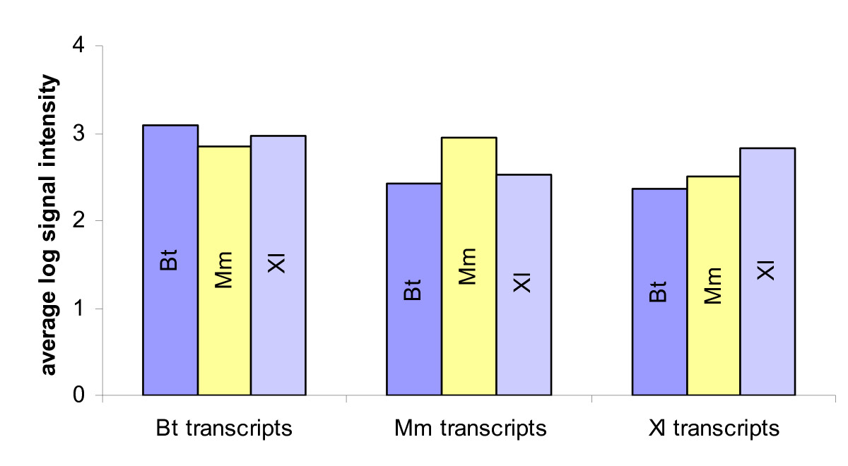 https://static-content.springer.com/image/art%3A10.1186%2F1471-2164-7-113/MediaObjects/12864_2005_Article_496_Fig4_HTML.jpg