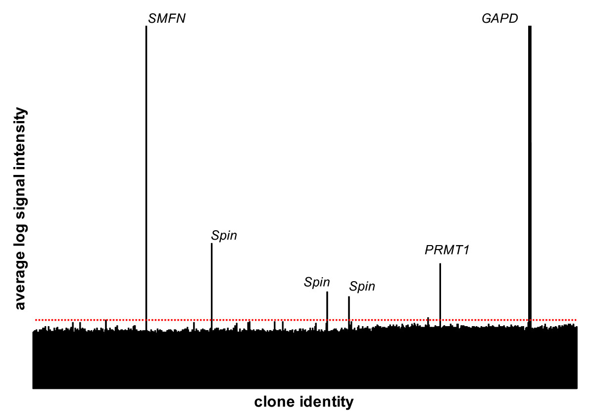https://static-content.springer.com/image/art%3A10.1186%2F1471-2164-7-113/MediaObjects/12864_2005_Article_496_Fig6_HTML.jpg