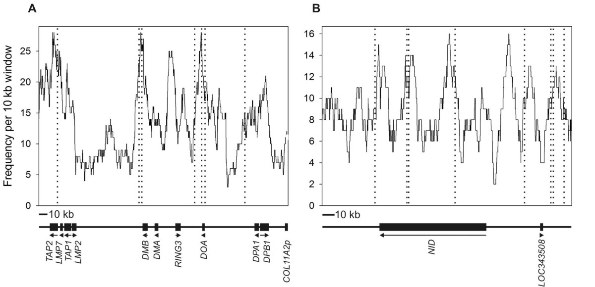 https://static-content.springer.com/image/art%3A10.1186%2F1471-2164-7-179/MediaObjects/12864_2006_Article_562_Fig2_HTML.jpg