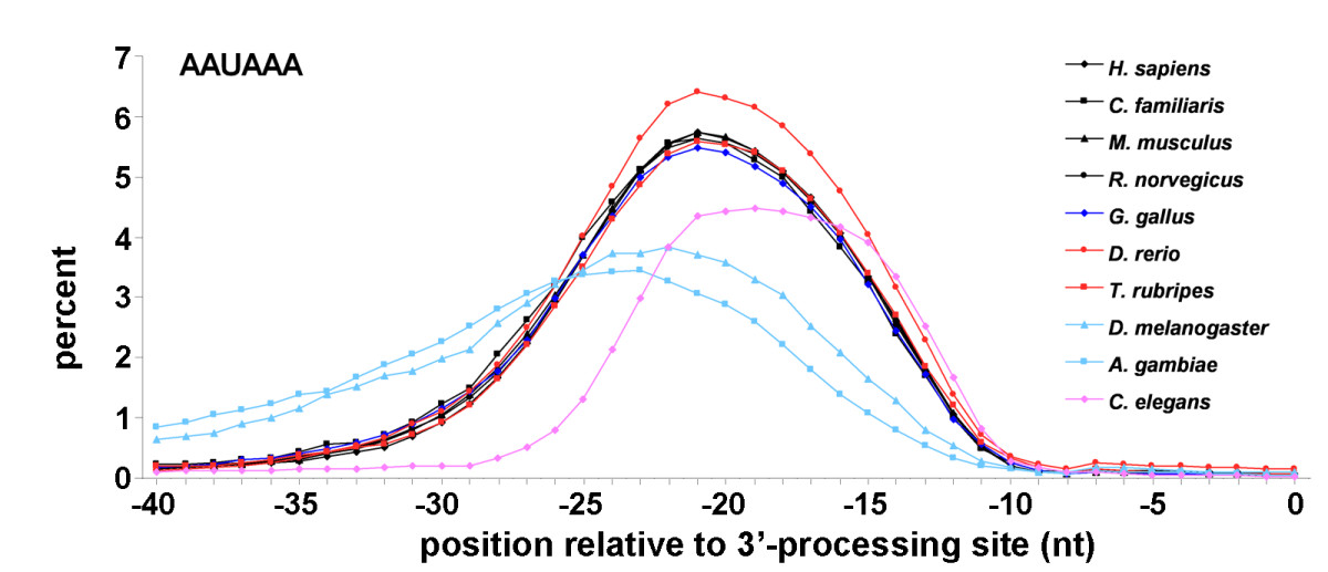 https://static-content.springer.com/image/art%3A10.1186%2F1471-2164-7-55/MediaObjects/12864_2006_Article_438_Fig1_HTML.jpg