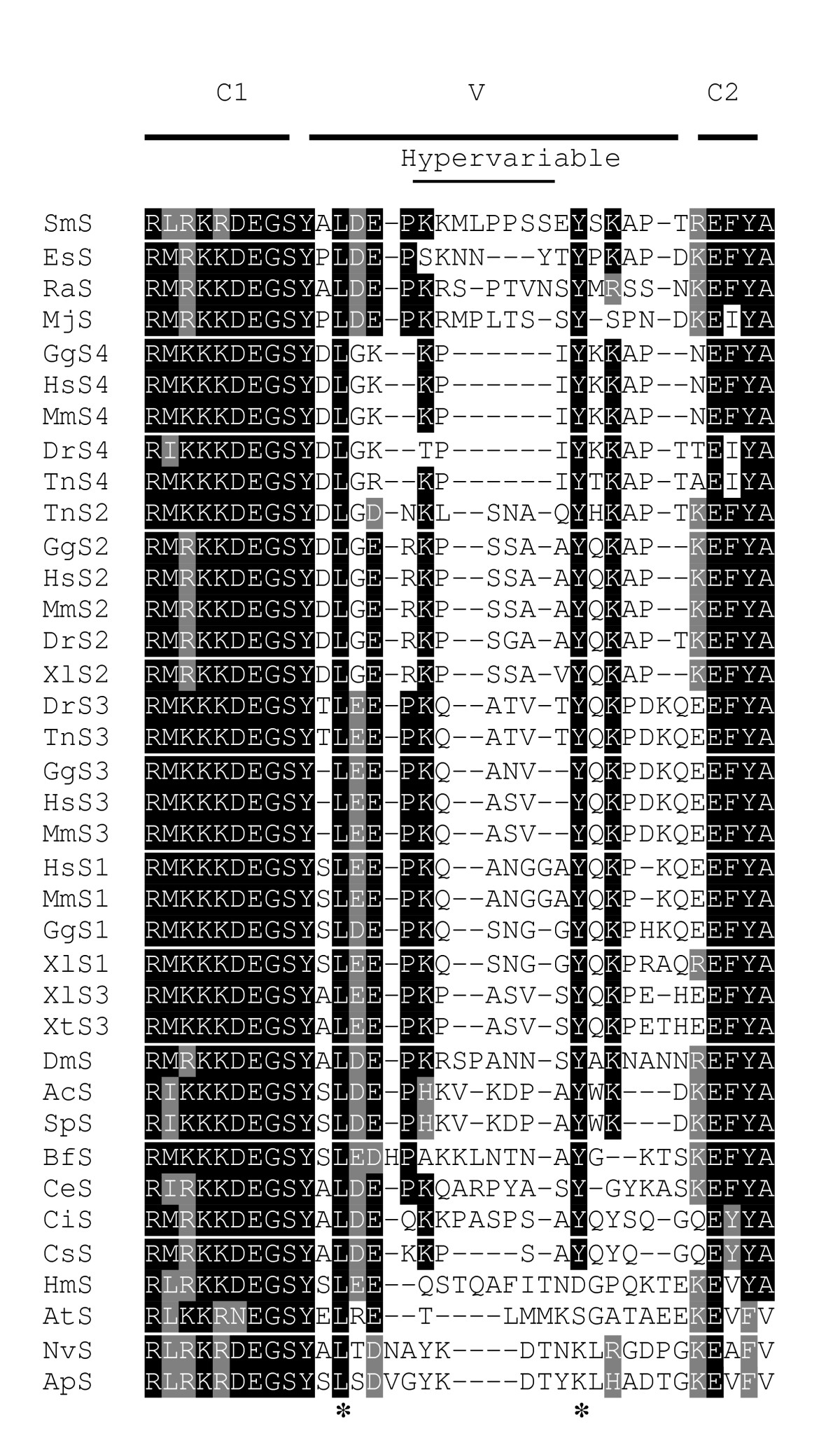 https://static-content.springer.com/image/art%3A10.1186%2F1471-2164-7-83/MediaObjects/12864_2006_Article_466_Fig1_HTML.jpg