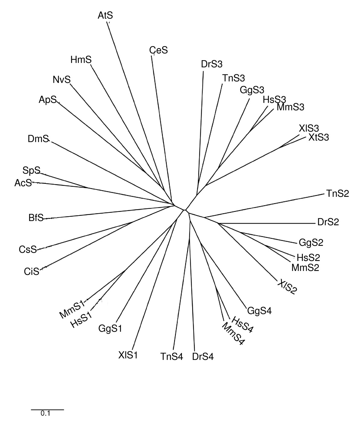 https://static-content.springer.com/image/art%3A10.1186%2F1471-2164-7-83/MediaObjects/12864_2006_Article_466_Fig2_HTML.jpg
