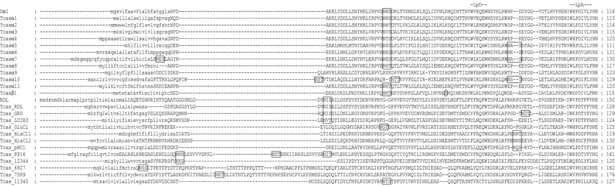 https://static-content.springer.com/image/art%3A10.1186%2F1471-2164-8-327/MediaObjects/12864_2007_Article_1040_Fig1_HTML.jpg