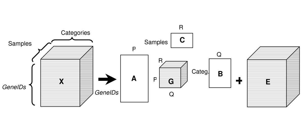 https://static-content.springer.com/image/art%3A10.1186%2F1471-2164-8-380/MediaObjects/12864_2007_Article_1093_Fig5_HTML.jpg