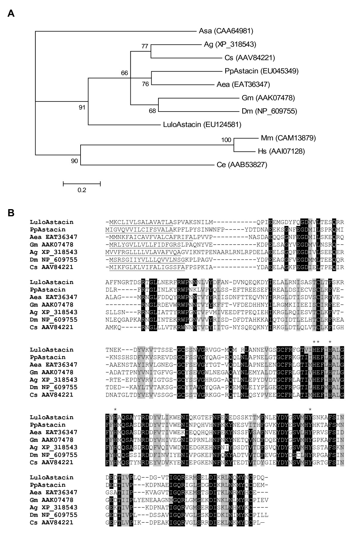https://static-content.springer.com/image/art%3A10.1186%2F1471-2164-9-15/MediaObjects/12864_2007_Article_1209_Fig5_HTML.jpg