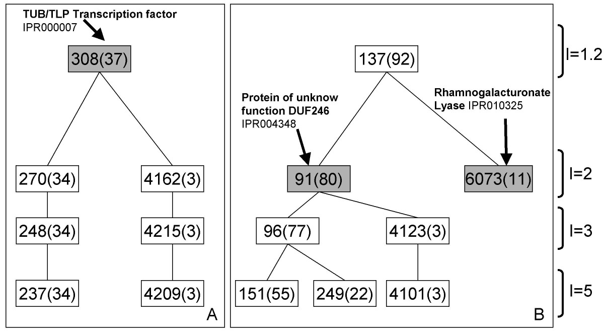 https://static-content.springer.com/image/art%3A10.1186%2F1471-2164-9-183/MediaObjects/12864_2007_Article_1376_Fig1_HTML.jpg
