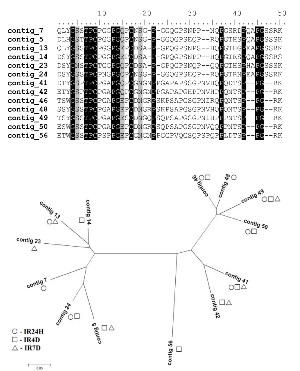 https://static-content.springer.com/image/art%3A10.1186%2F1471-2164-9-233/MediaObjects/12864_2008_Article_1426_Fig4_HTML.jpg
