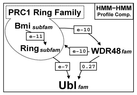 https://static-content.springer.com/image/art%3A10.1186%2F1471-2164-9-308/MediaObjects/12864_2008_Article_1501_Fig2_HTML.jpg