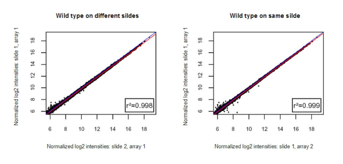 https://static-content.springer.com/image/art%3A10.1186%2F1471-2164-9-390/MediaObjects/12864_2008_Article_1583_Fig1_HTML.jpg