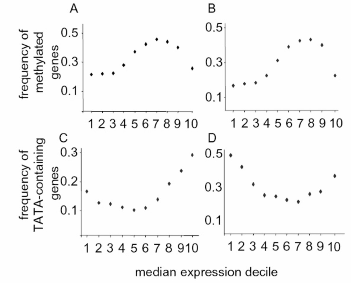 https://static-content.springer.com/image/art%3A10.1186%2F1471-2164-9-438/MediaObjects/12864_2008_Article_1631_Fig4_HTML.jpg
