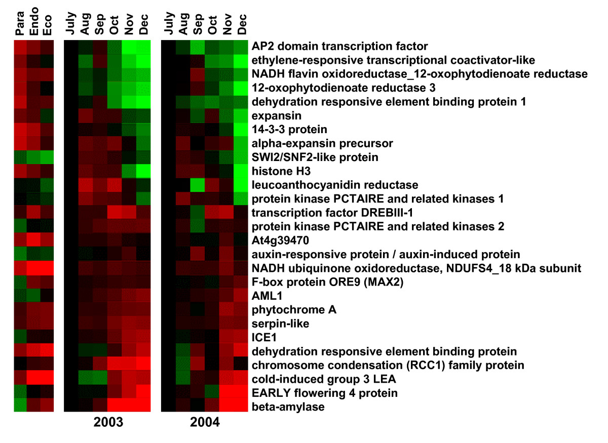https://static-content.springer.com/image/art%3A10.1186%2F1471-2164-9-536/MediaObjects/12864_2008_Article_1729_Fig2_HTML.jpg