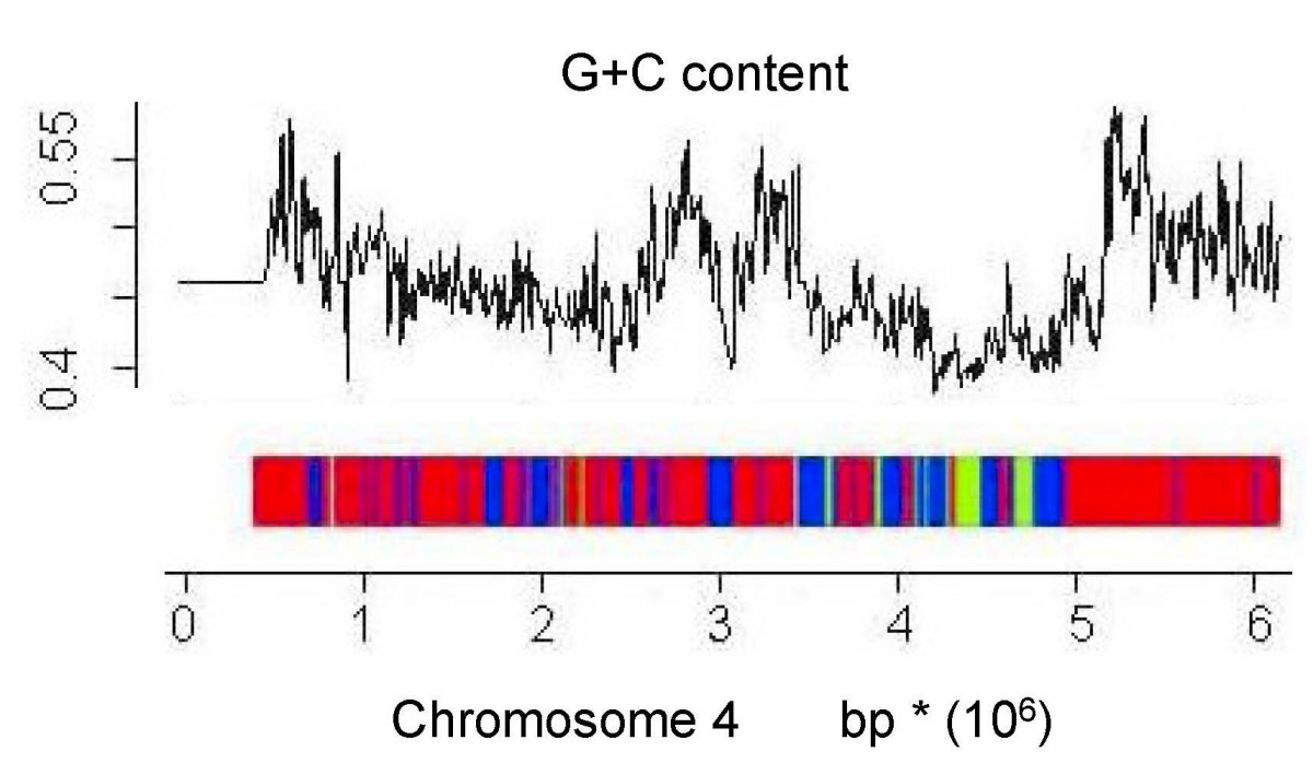 https://static-content.springer.com/image/art%3A10.1186%2F1471-2164-9-632/MediaObjects/12864_2007_Article_1825_Fig4_HTML.jpg