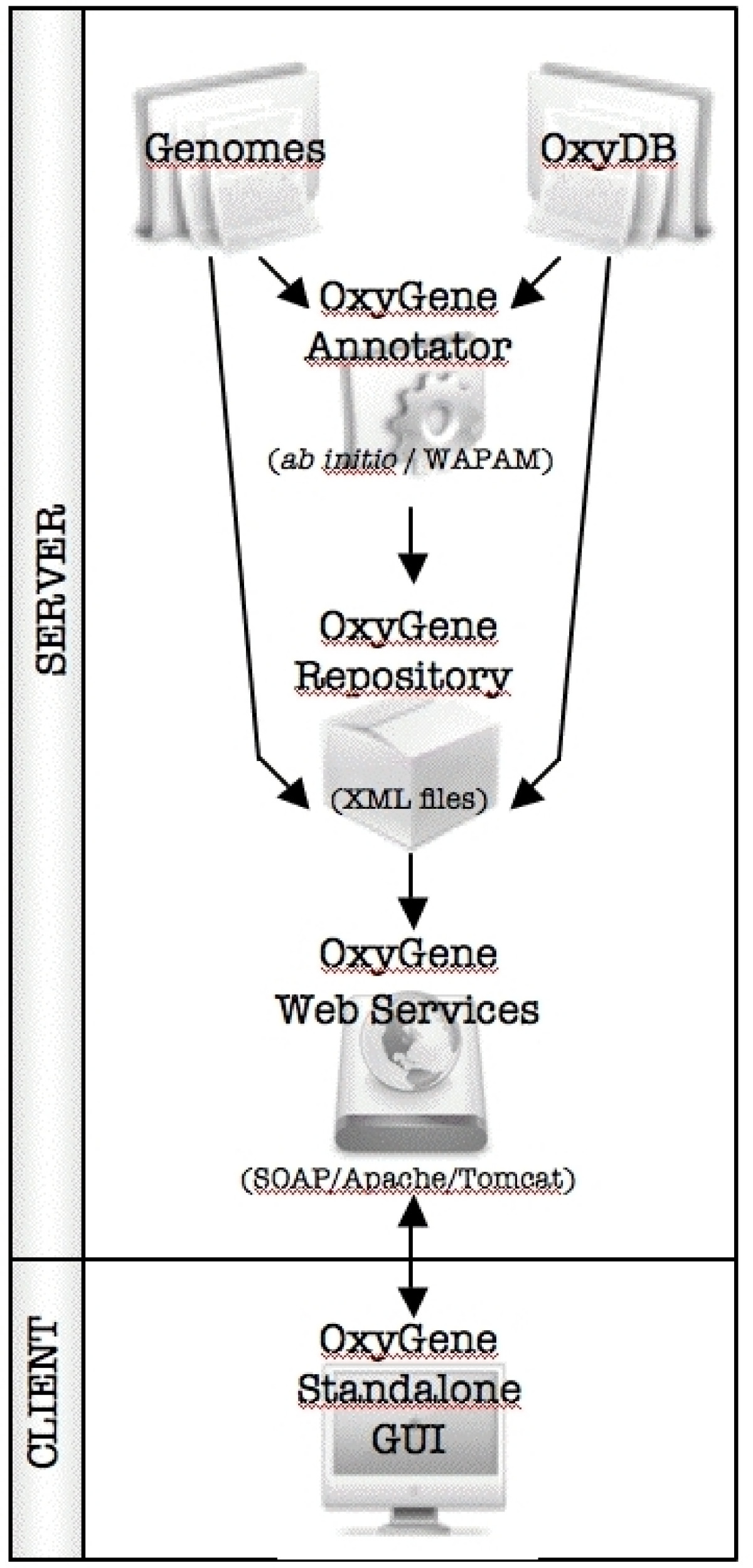 https://static-content.springer.com/image/art%3A10.1186%2F1471-2164-9-637/MediaObjects/12864_2008_Article_1830_Fig1_HTML.jpg
