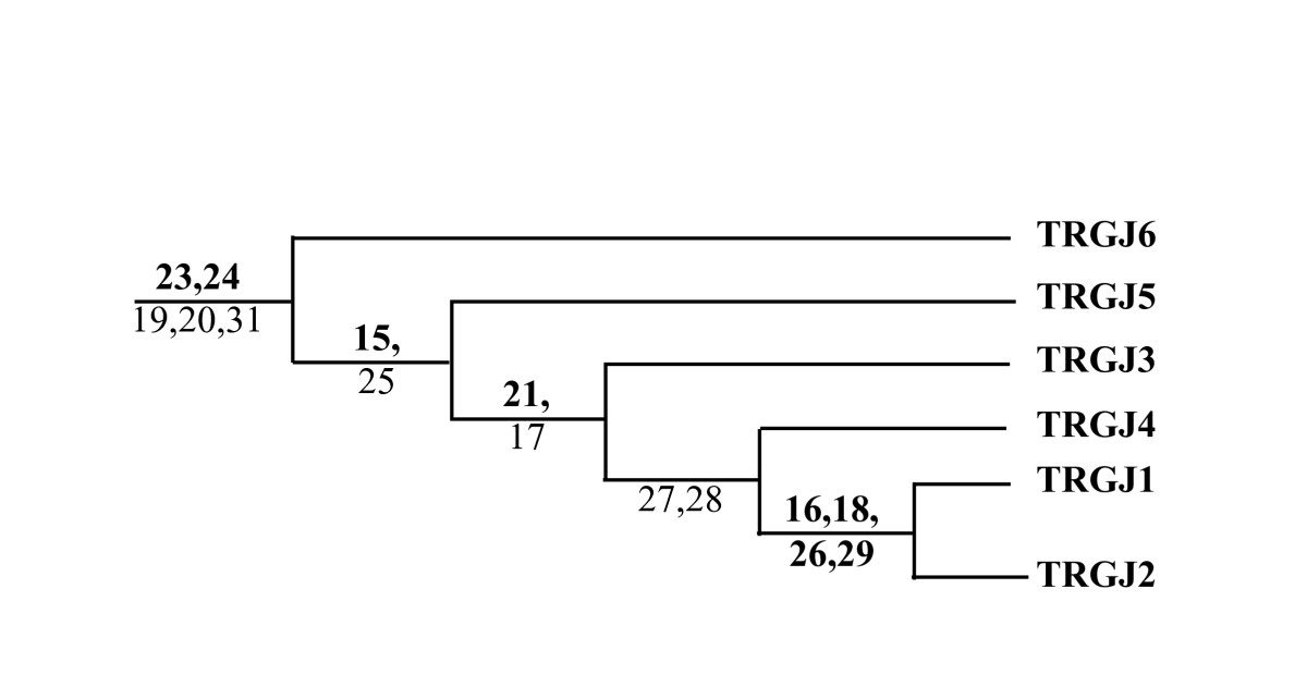 https://static-content.springer.com/image/art%3A10.1186%2F1471-2164-9-81/MediaObjects/12864_2007_Article_1275_Fig9_HTML.jpg