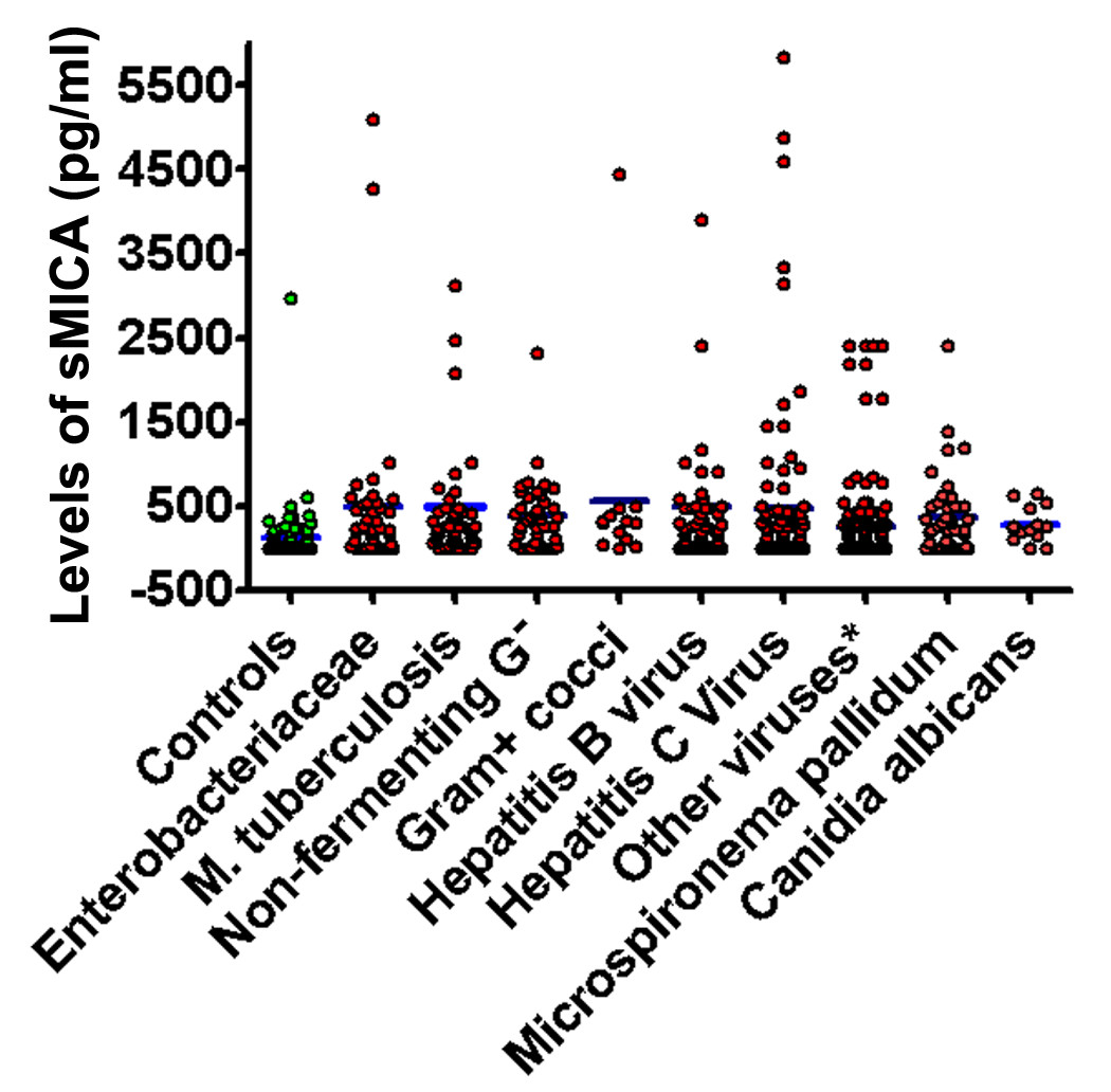 https://static-content.springer.com/image/art%3A10.1186%2F1471-2172-13-62/MediaObjects/12865_2012_Article_488_Fig4_HTML.jpg