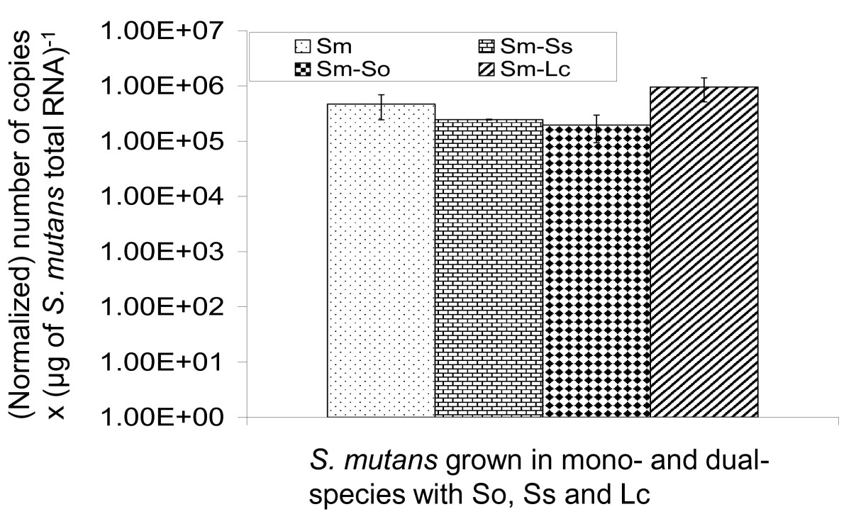 https://static-content.springer.com/image/art%3A10.1186%2F1471-2180-10-111/MediaObjects/12866_2009_Article_1067_Fig1_HTML.jpg