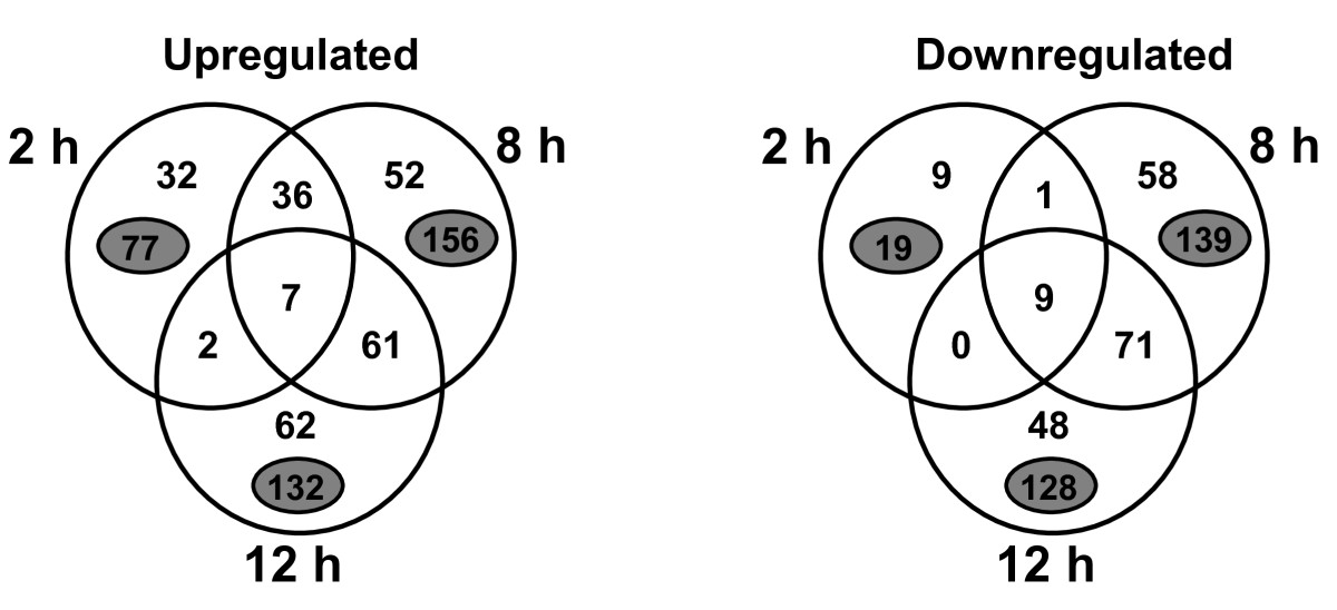 https://static-content.springer.com/image/art%3A10.1186%2F1471-2180-10-231/MediaObjects/12866_2010_Article_1187_Fig1_HTML.jpg
