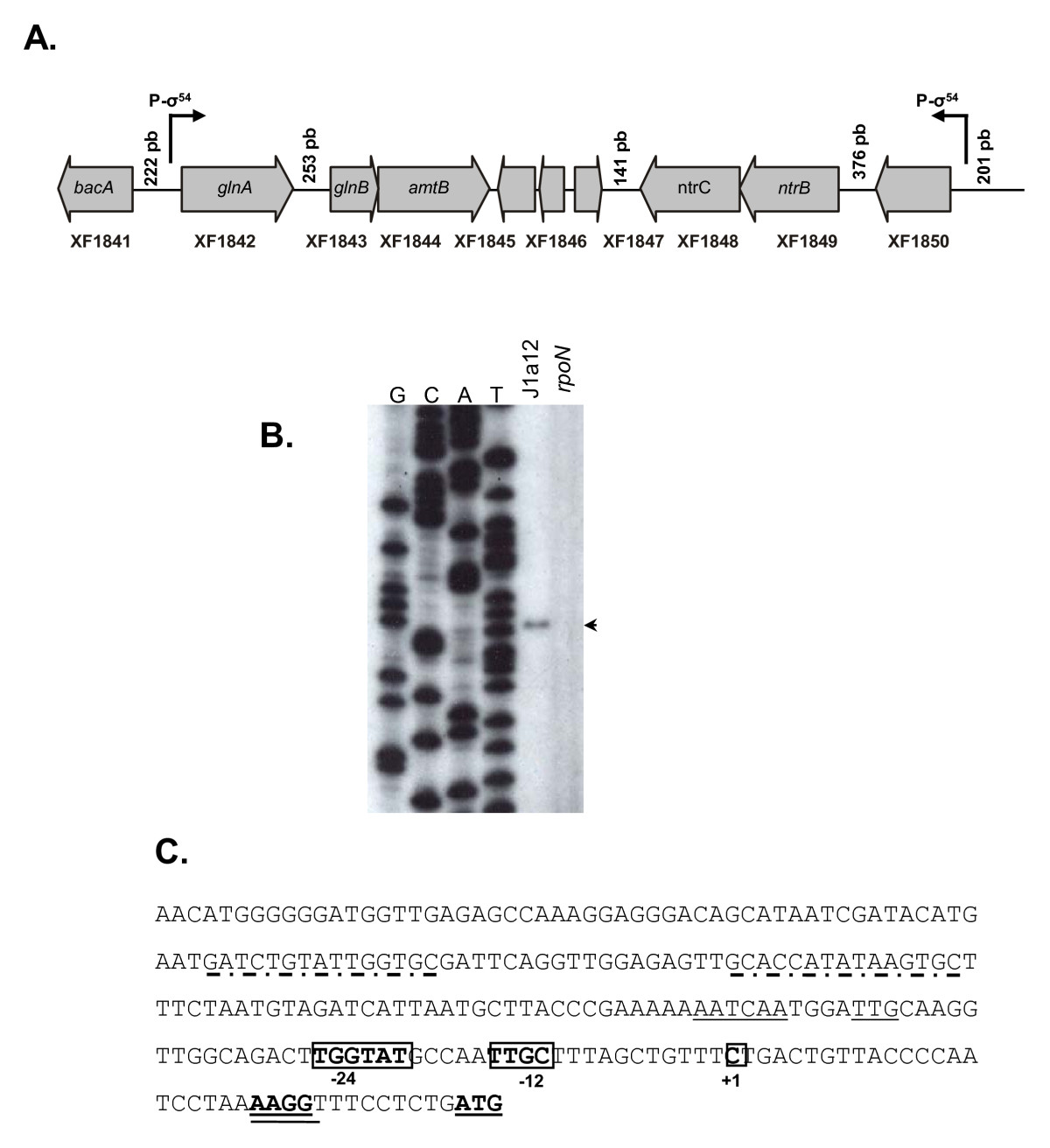 https://static-content.springer.com/image/art%3A10.1186%2F1471-2180-10-231/MediaObjects/12866_2010_Article_1187_Fig3_HTML.jpg