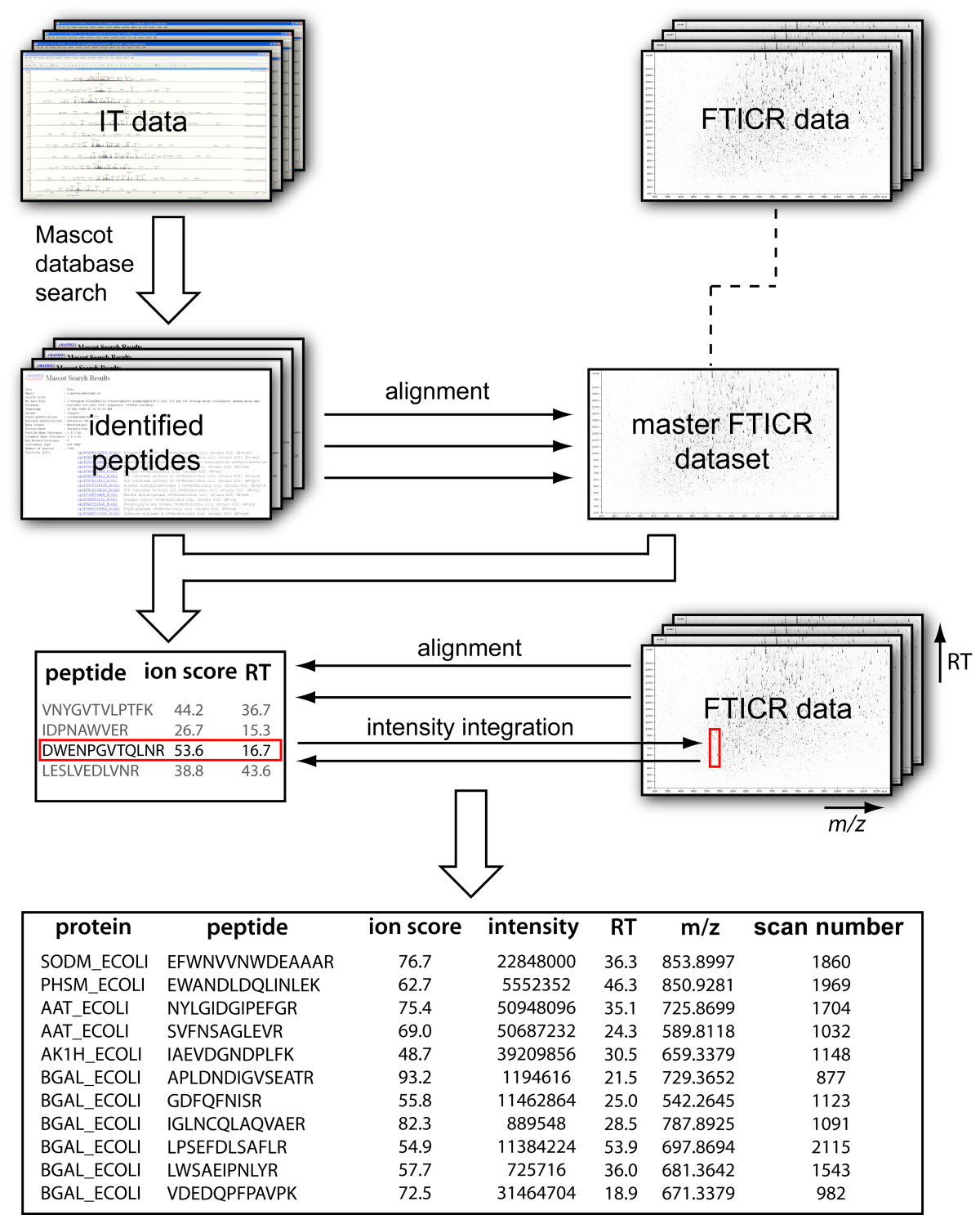 https://static-content.springer.com/image/art%3A10.1186%2F1471-2180-11-126/MediaObjects/12866_2010_Article_1402_Fig5_HTML.jpg