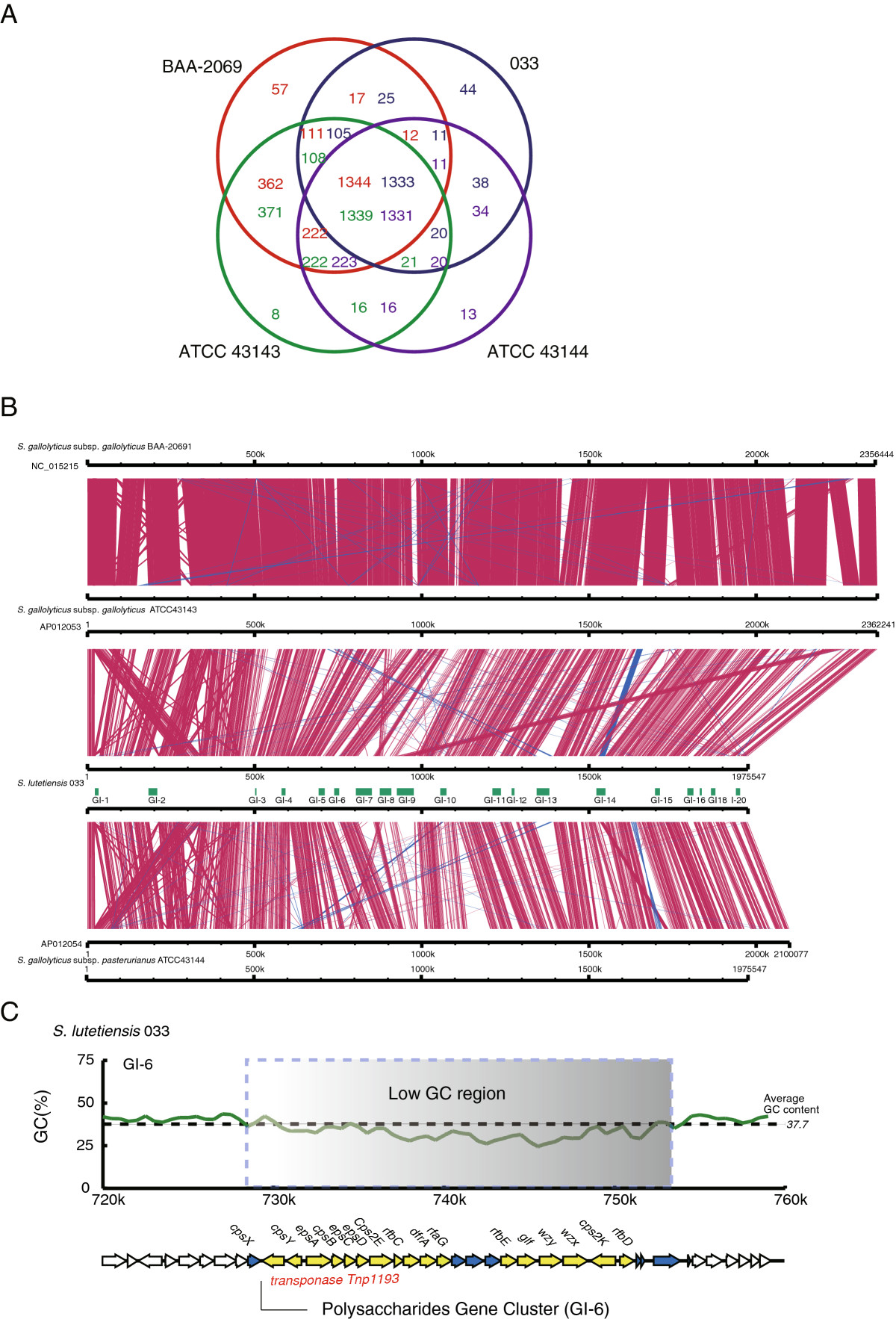 https://static-content.springer.com/image/art%3A10.1186%2F1471-2180-13-141/MediaObjects/12866_2012_Article_2031_Fig5_HTML.jpg