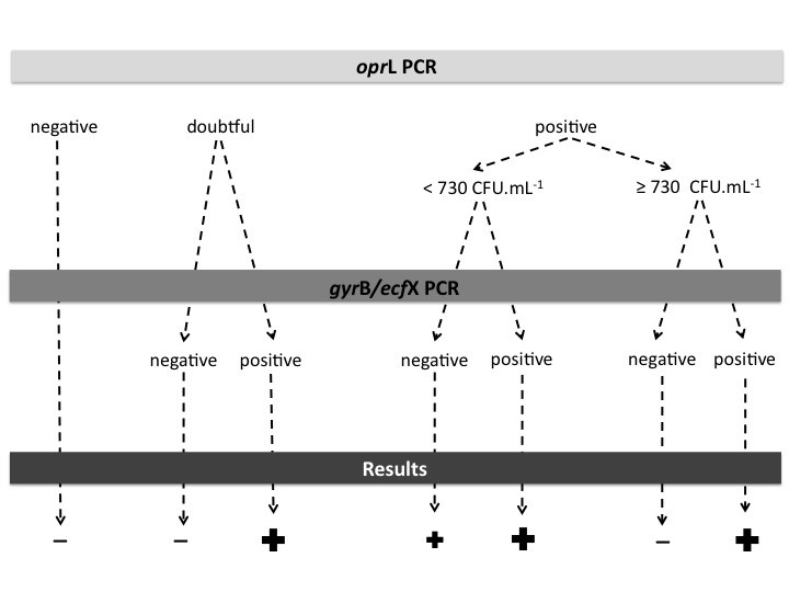 https://static-content.springer.com/image/art%3A10.1186%2F1471-2180-13-143/MediaObjects/12866_2013_Article_2006_Fig1_HTML.jpg