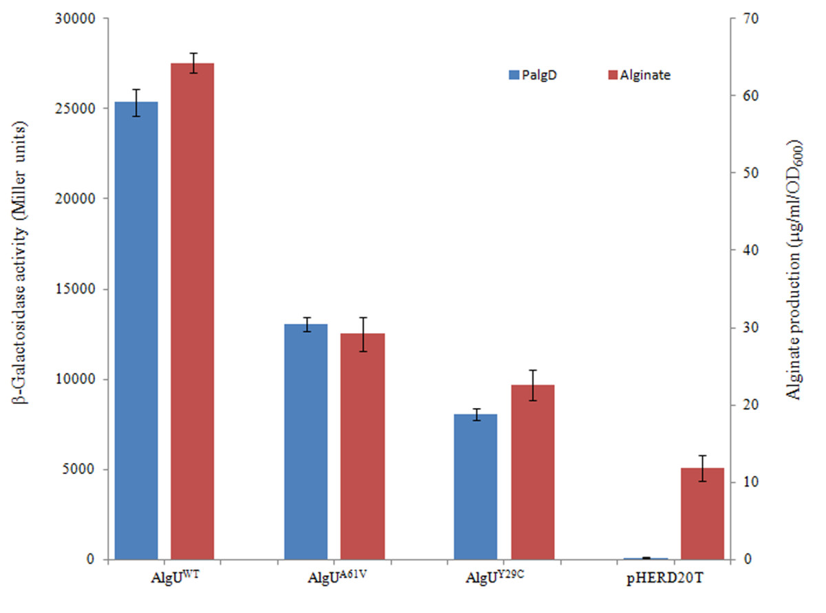 https://static-content.springer.com/image/art%3A10.1186%2F1471-2180-13-232/MediaObjects/12866_2013_Article_2109_Fig6_HTML.jpg