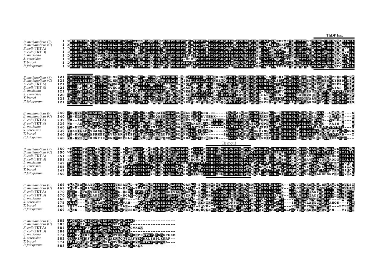https://static-content.springer.com/image/art%3A10.1186%2F1471-2180-14-7/MediaObjects/12866_2013_Article_2182_Fig2_HTML.jpg