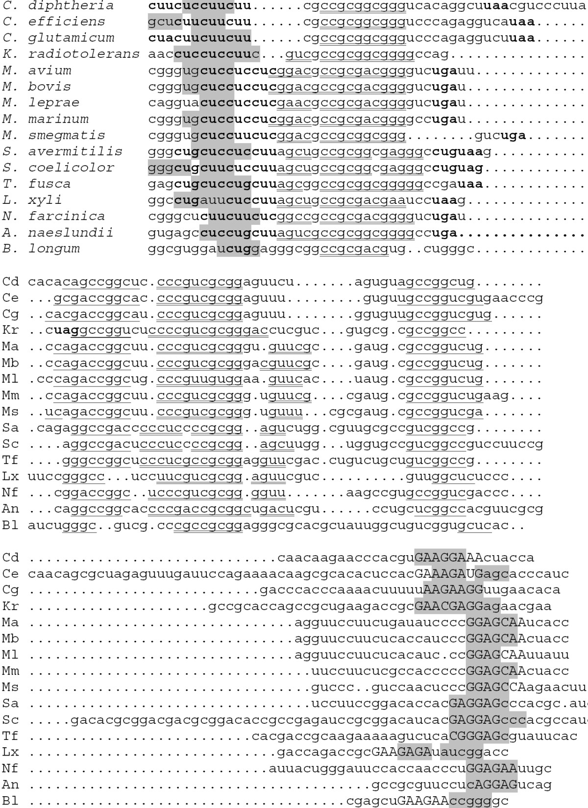 https://static-content.springer.com/image/art%3A10.1186%2F1471-2180-5-54/MediaObjects/12866_2005_Article_201_Fig5_HTML.jpg