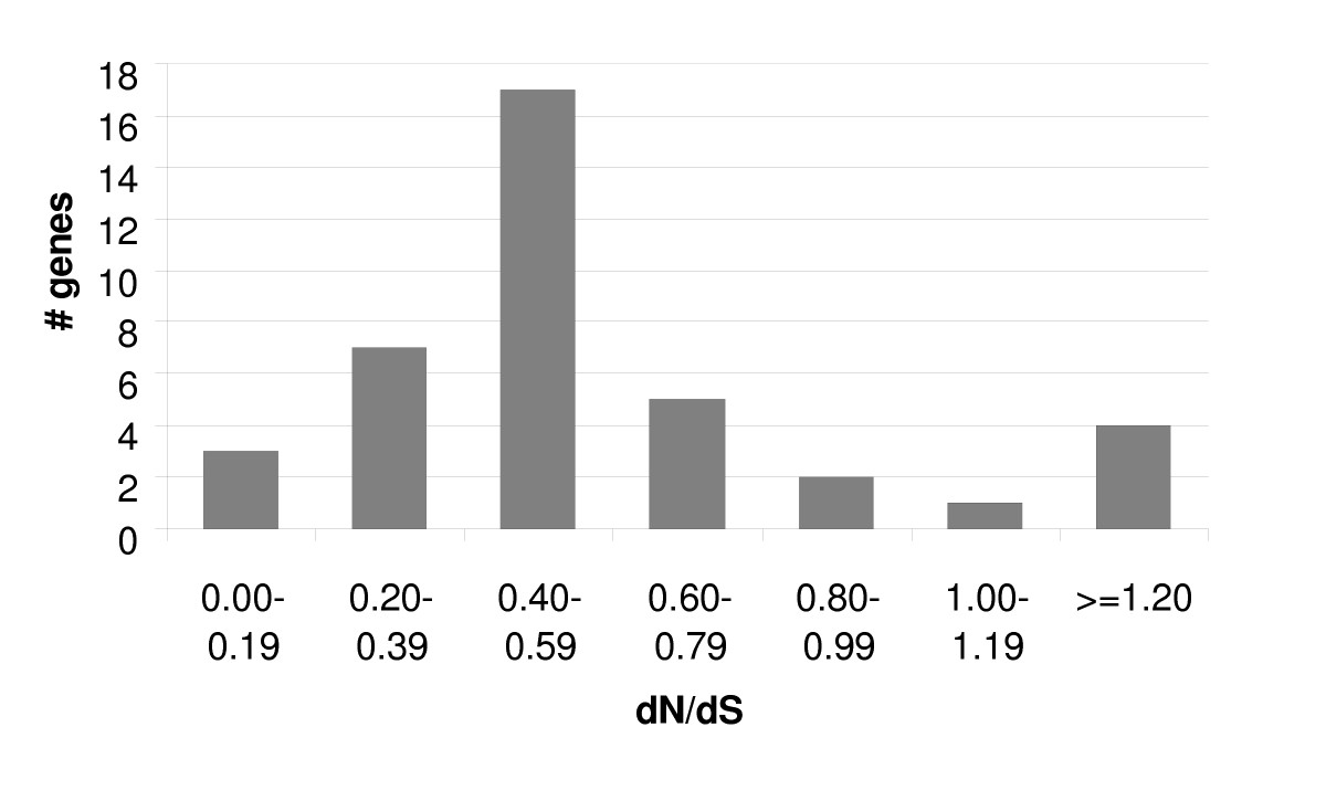 https://static-content.springer.com/image/art%3A10.1186%2F1471-2180-7-61/MediaObjects/12866_2007_Article_378_Fig4_HTML.jpg