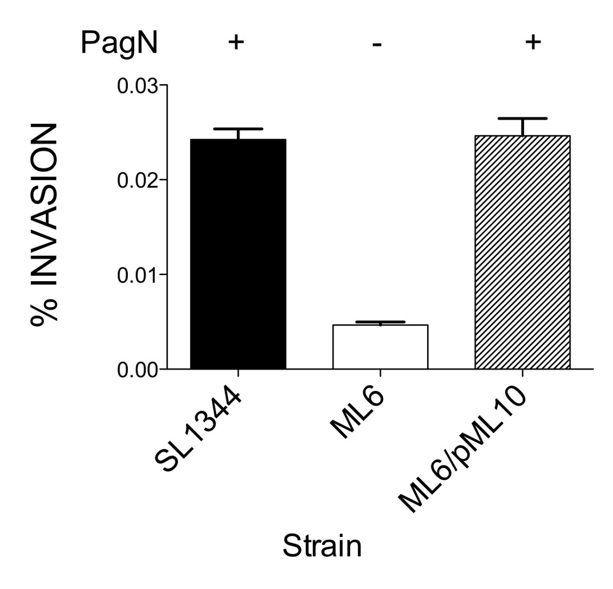 https://static-content.springer.com/image/art%3A10.1186%2F1471-2180-8-142/MediaObjects/12866_2008_Article_575_Fig7_HTML.jpg
