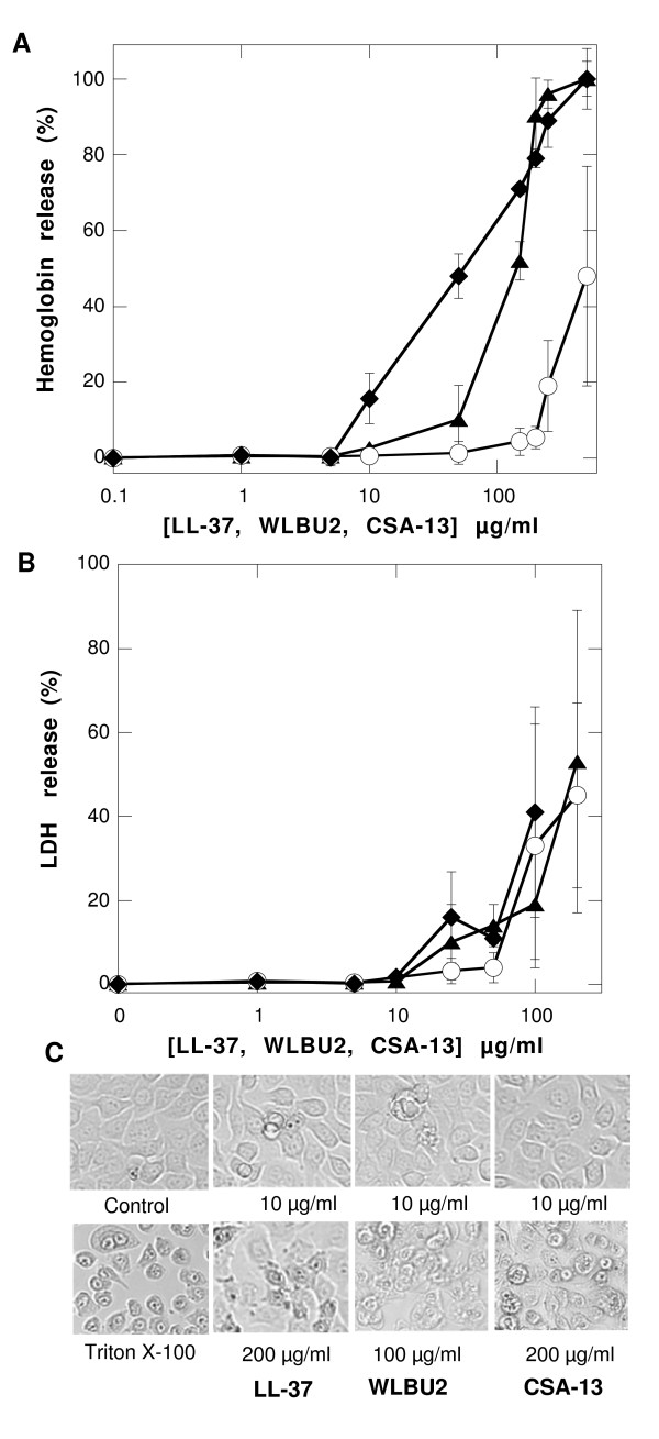 https://static-content.springer.com/image/art%3A10.1186%2F1471-2180-9-187/MediaObjects/12866_2009_Article_858_Fig5_HTML.jpg