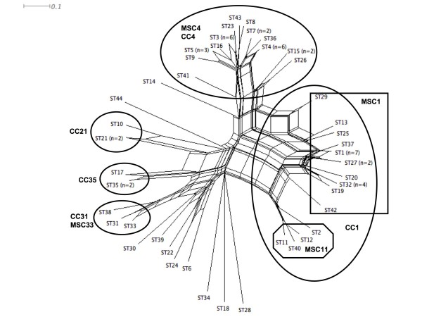 https://static-content.springer.com/image/art%3A10.1186%2F1471-2180-9-267/MediaObjects/12866_2009_Article_938_Fig4_HTML.jpg