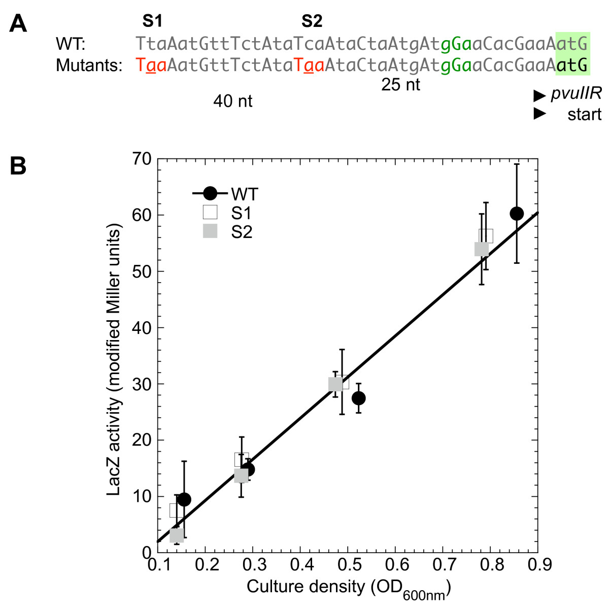 https://static-content.springer.com/image/art%3A10.1186%2F1471-2199-11-87/MediaObjects/12867_2010_Article_573_Fig5_HTML.jpg
