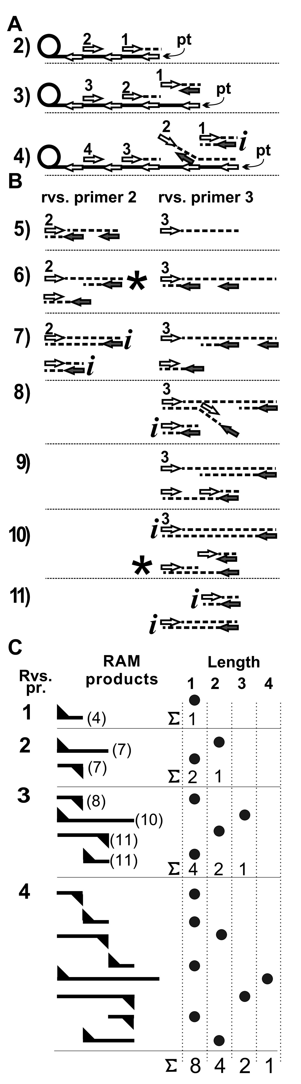 https://static-content.springer.com/image/art%3A10.1186%2F1471-2199-11-94/MediaObjects/12867_2010_Article_580_Fig3_HTML.jpg