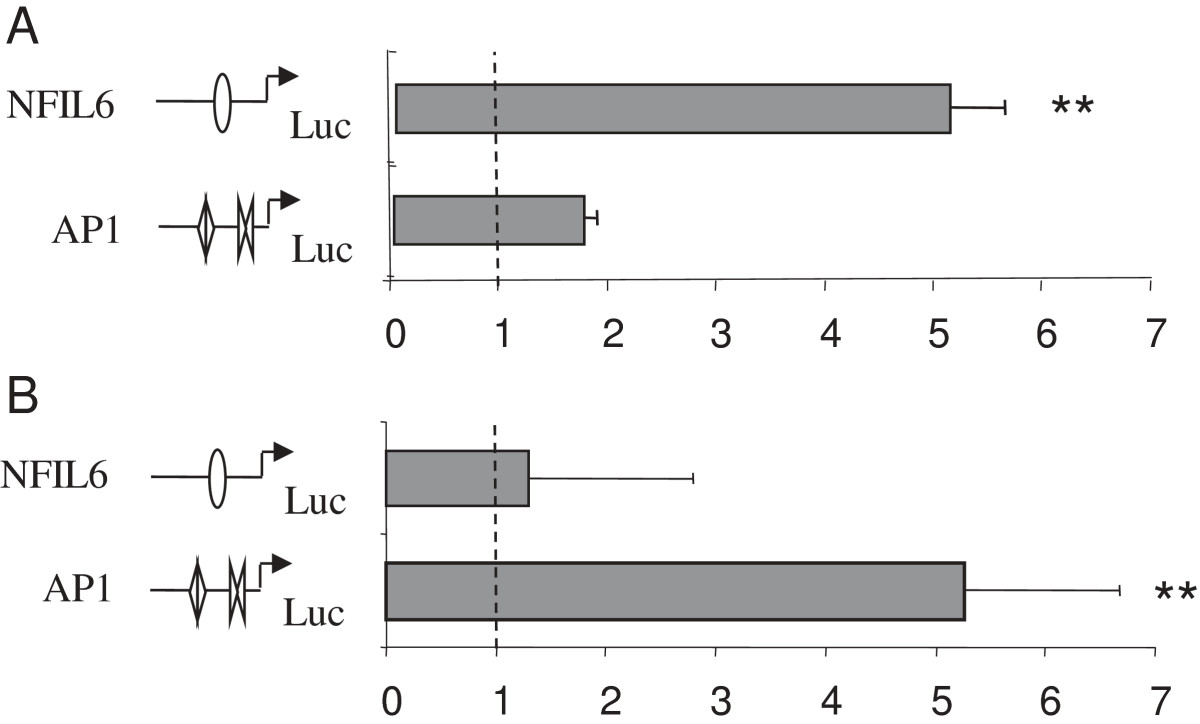 https://static-content.springer.com/image/art%3A10.1186%2F1471-2199-14-28/MediaObjects/12867_2013_Article_672_Fig7_HTML.jpg