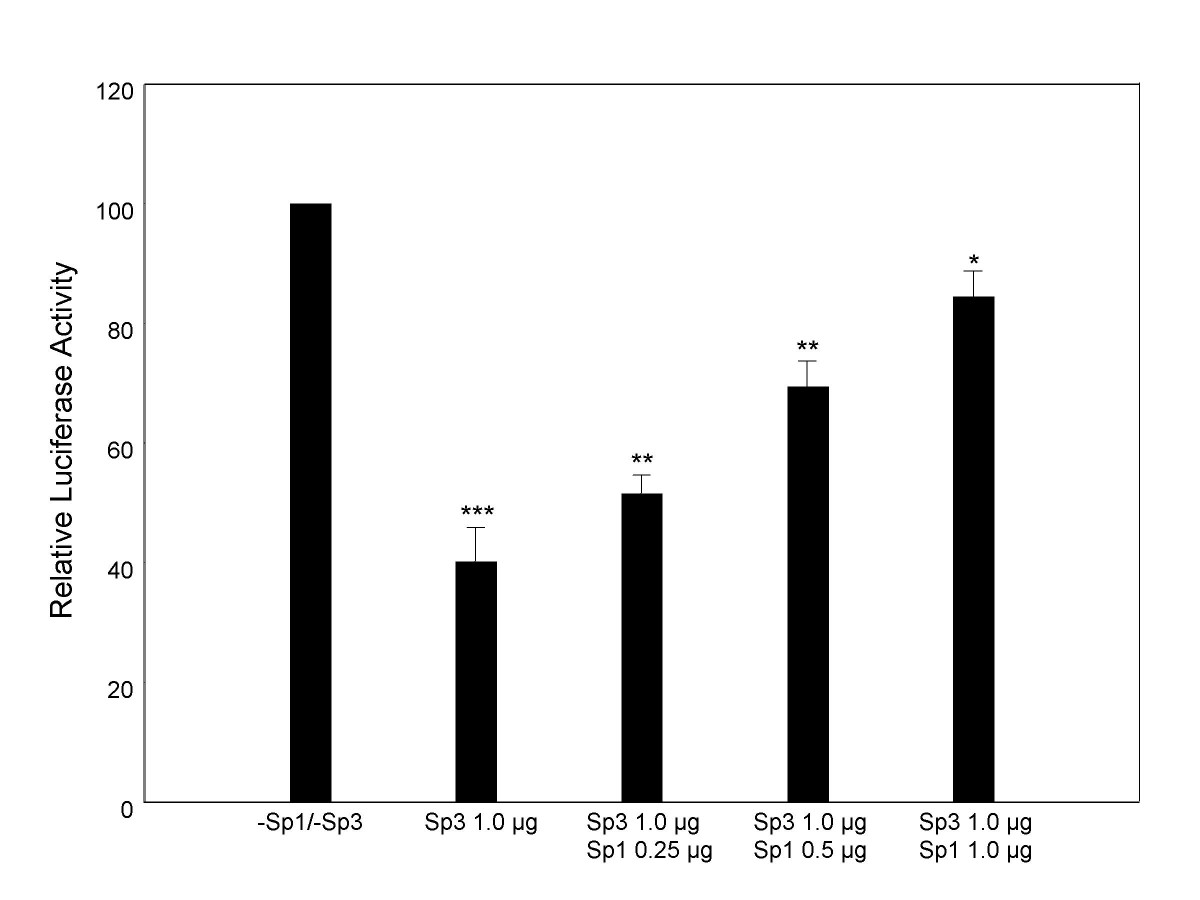 https://static-content.springer.com/image/art%3A10.1186%2F1471-2199-8-36/MediaObjects/12867_2006_Article_173_Fig4_HTML.jpg