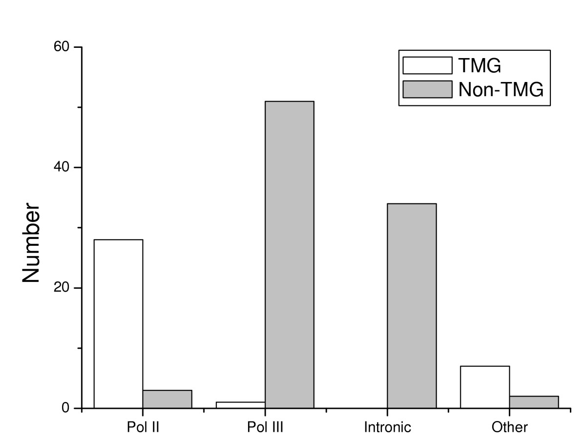 https://static-content.springer.com/image/art%3A10.1186%2F1471-2199-8-86/MediaObjects/12867_2007_Article_223_Fig3_HTML.jpg