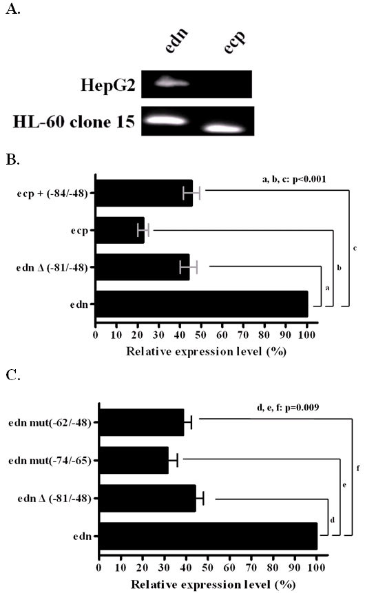 https://static-content.springer.com/image/art%3A10.1186%2F1471-2199-8-89/MediaObjects/12867_2007_Article_226_Fig2_HTML.jpg