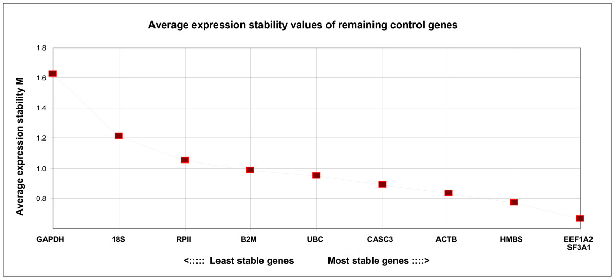 https://static-content.springer.com/image/art%3A10.1186%2F1471-2199-9-79/MediaObjects/12867_2008_Article_336_Fig1_HTML.jpg