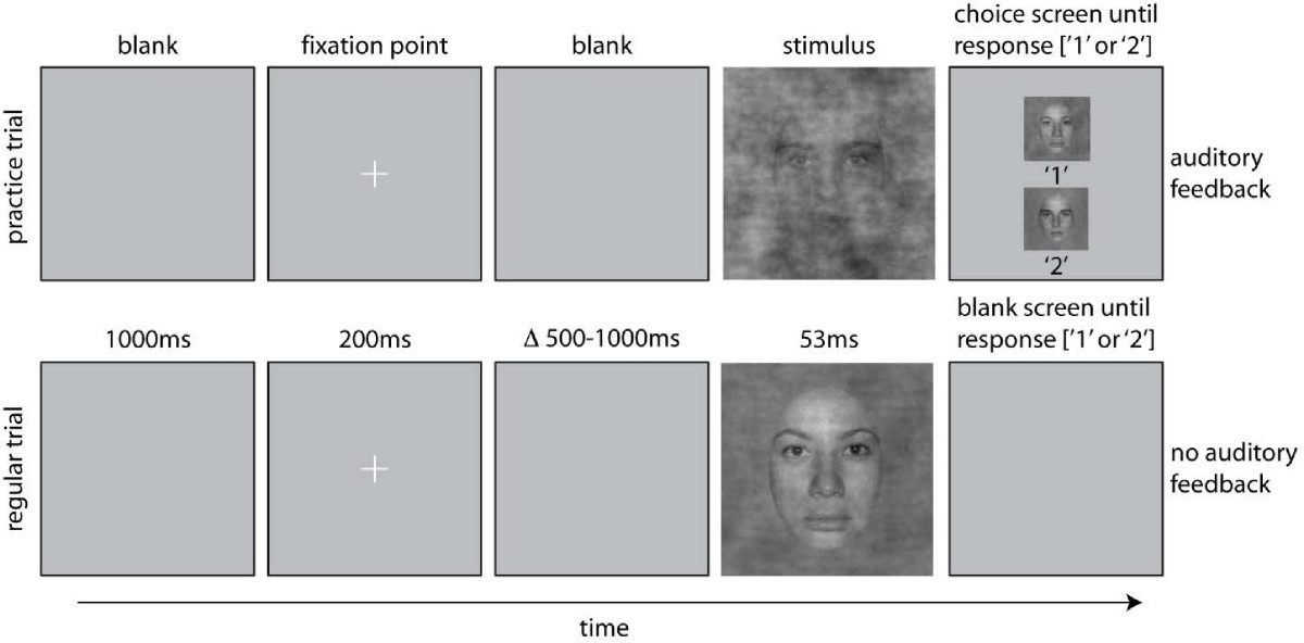 https://static-content.springer.com/image/art%3A10.1186%2F1471-2202-10-114/MediaObjects/12868_2009_Article_1118_Fig1_HTML.jpg