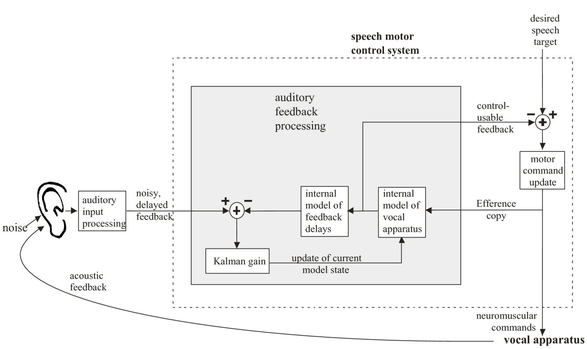 https://static-content.springer.com/image/art%3A10.1186%2F1471-2202-10-58/MediaObjects/12868_2009_Article_1062_Fig1_HTML.jpg
