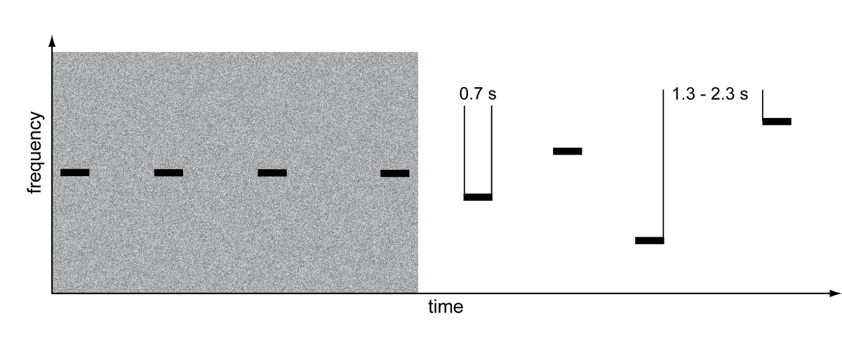 https://static-content.springer.com/image/art%3A10.1186%2F1471-2202-11-156/MediaObjects/12868_2010_Article_1933_Fig1_HTML.jpg