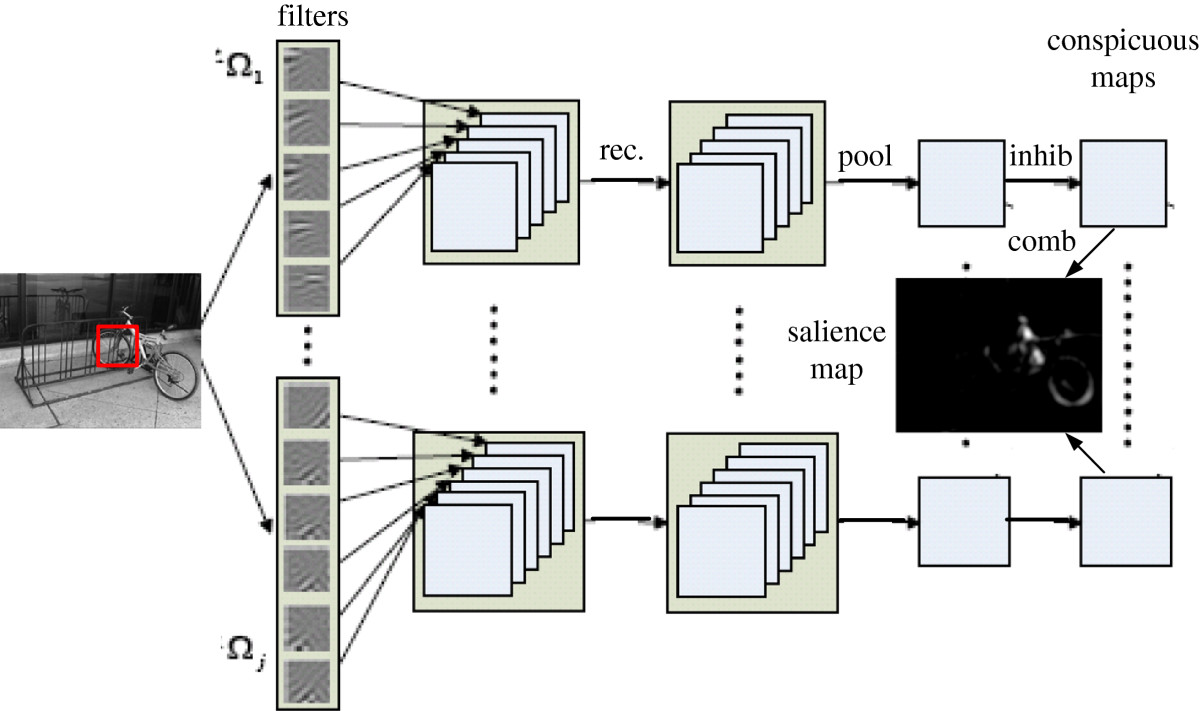 https://static-content.springer.com/image/art%3A10.1186%2F1471-2202-13-145/MediaObjects/12868_2012_Article_2859_Fig1_HTML.jpg