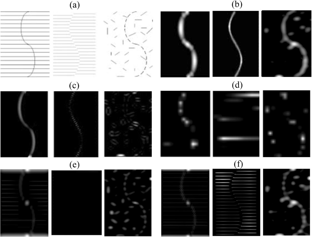 https://static-content.springer.com/image/art%3A10.1186%2F1471-2202-13-145/MediaObjects/12868_2012_Article_2859_Fig6_HTML.jpg
