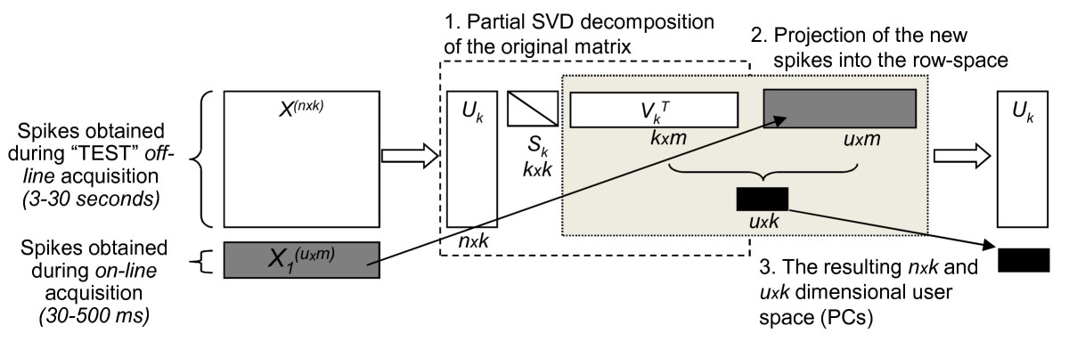 https://static-content.springer.com/image/art%3A10.1186%2F1471-2202-13-96/MediaObjects/12868_2012_Article_2779_Fig5_HTML.jpg