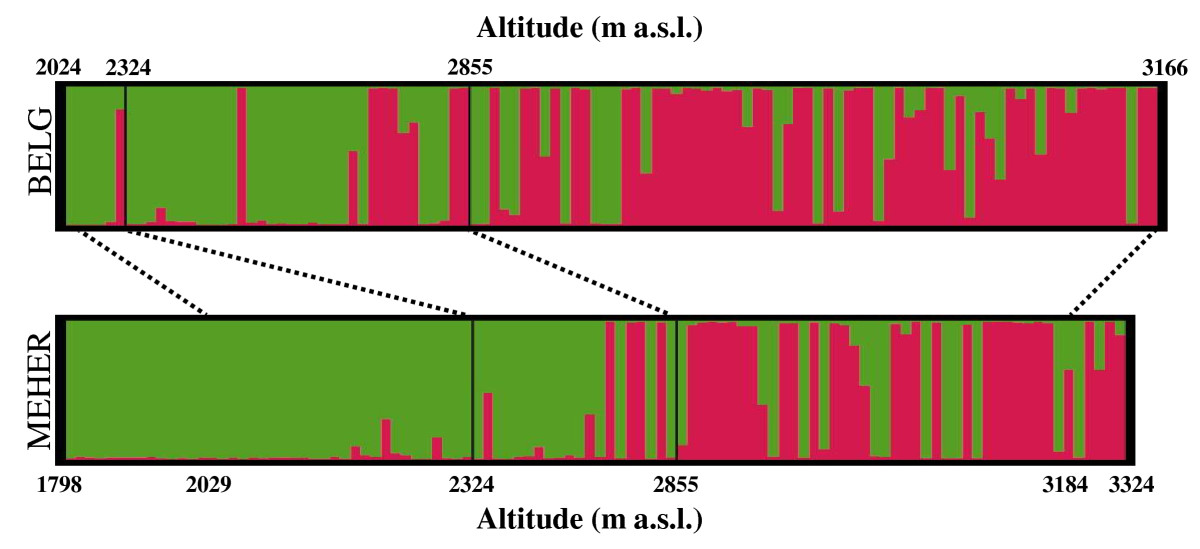 https://static-content.springer.com/image/art%3A10.1186%2F1471-2229-10-121/MediaObjects/12870_2009_Article_615_Fig3_HTML.jpg